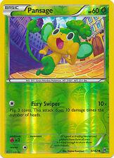Pansage Common Reverse Holo Pokemon Card XY BREAKThrough 5/162