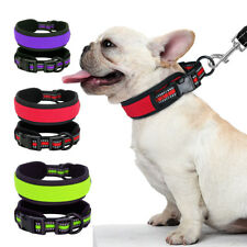 Nylon Reflective Small Large Dog Collar Adjustable Soft Padded Bulldog Labrador