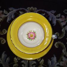 Vintage Delphine Yellow & Hand Painted Flowers Tea Cup and Saucer