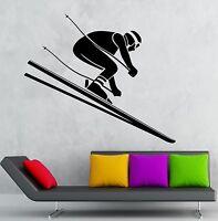 Wall Decal Downhill Skiing Alpine Winter Sport Vinyl Stickers Art Mural (ig2601)