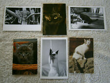 Six Postcards - Animals, Cats & Kittens