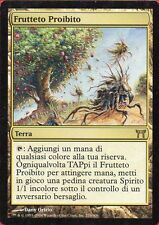 MAGIC MtG - FRUTTETO PROIBITO Forbidden Orchard - NM ITA