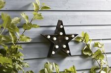 Star Illuminated Battery Operated Lumières - Smart Garden