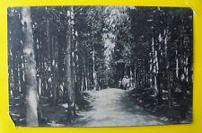 ABBADIA SAN SALVATORE: Parco della Rimembranza 1933