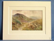 MAM TOR PEAK DISTRICT VINTAGE DOUBLE MOUNTED HASLEHUST WATERCOLOUR PRINT 10X8