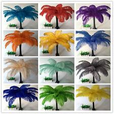 Wholesale, 10-100pcs beautiful ostrich feathers 6-20inches/15-50cm 16 colors