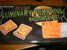 20 Light Luminary Pumpkins Halloween Set indoor/outdoor