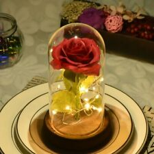 Red Rose in a Glass Dome with LED Light for Valentine's Mother's Day Gifts