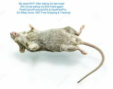 12 Packs Rat & Mice Killer FREE Priority Mail Shipping Insured!
