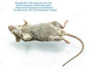 12 Packs Rat & Mice Killer FREE Priority Mail Shipping Insured!