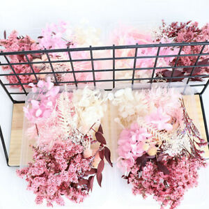 Real Dried Flowers For DIY Art Craft Epoxy Resin Wedding Gift Making Decor