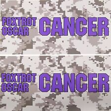 TWO Pack Toolbox Warning STICKERS Foxtrot Oscar PANCREATIC Cancer Awareness