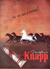PUBBLICITA'  DR. KNAPP DENTIFRICIO DENTISTA CAVALLO BIANCO CORSA GALOPPO 1945