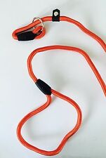 NEW RED ROPE Dog Lead For Small Dog,Puppy Or Cat UK SELLER