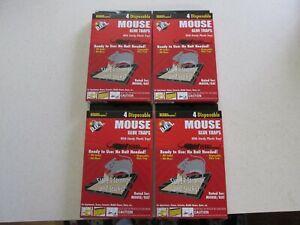 Lot Of 16 Mice Mouse Sticky Glue Traps Trays