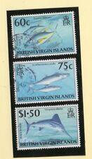 Islas Virgenes Fauna Marina Peces año 1996 (DN-698)