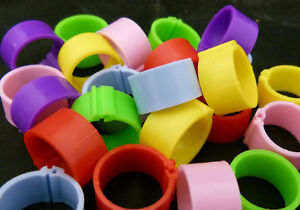 10 x 16mm Clic Leg Rings Chickens Poultry Mix Colours