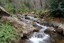 Golden Salamander 40 Acre Placer Gold Mining Claim, Land Near San Andreas, CA
