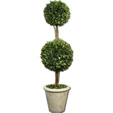 Uttermost Two Sphere Topiary Preserved Boxwood - 60106
