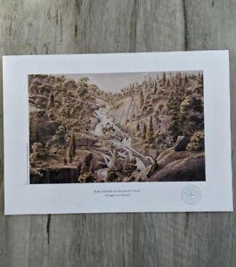 Reedy Creek Falls, Beechworth print VON GUERARD limited Edition WEEKLY Times