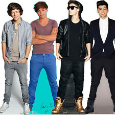 1D ONE DIRECTION STANDEE LIFESIZE STANDUP CUTOUT CARDBOARD PARTY BIRTHDAY GIFT
