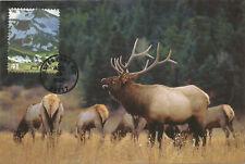 Elk Alpine Tundra Mammal Wildlife Fdc Usa Maximum Card Scott 4198a