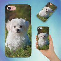 NATURE ANIMAL DOG PET MALTESE HARD BACK CASE FOR APPLE IPHONE PHONE