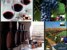 2005 Wine Maxi Cards Prepaid Postcard Maxicards Australia