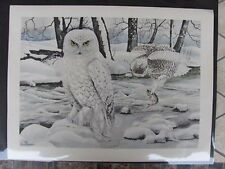 Original  1930 Rex Brasher #376  Hand Colored Bird Print  Snow Owl #376REX2 DSS