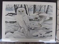 Original  1930 Rex Brasher #376  Hand Colored Bird Print  Snow Owl #376REX2 DSS