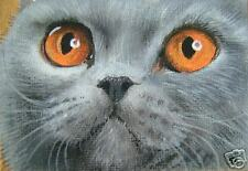 British Blue Shorthair cat art print from original painting by Suzanne Le Good