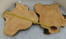 2 LARGE PINE WOOD SLICE 42 x 38 NICE CORE RINGS TABLE DECORATION WEDDING DISPLAY