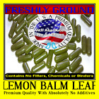 LEMON BALM LEAF With Absolutely No Additives High Potency 100 Vegetarian Capsule