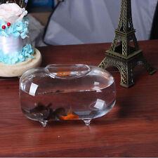18cm Oval Glass Vase Fish Tank Jar Ball Bowl Planter Terrarium Decor Aquarium