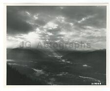 Washington State History - Olympic Rain Forest - Vintage 8x10 Photograph