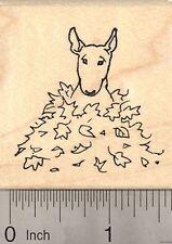 Bull Terrier Dog Rubber Stamp, in Autumn Leaves   E22610 WM