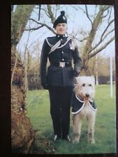 POSTCARD REGIMENTAL MASCOTS OF THE ARMY - ROYAL IRISH REGIMENT - BRIAN BORU V
