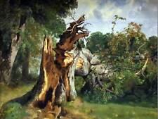 PAINTING LANDSCAPE CALAME STUDY TREE TRUNK ART PRINT POSTER LAH059
