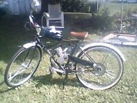 schwinn peddle motor bike