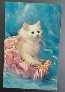 Picture Postcard. White Cat. Posted to Essex in 1963.