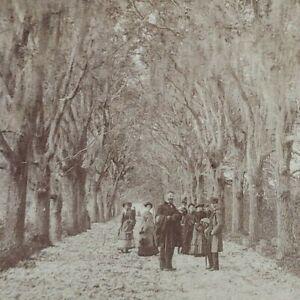 Forest Highway Street Scene Victorian 1890s Men Women Ingersoll Stereoview D306