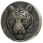2021 5 Oz Silver 5000 Francs TIGER Big Five Antique Finish Coin.