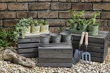 More details for set 3 vintage planters tray indoor or outdoor flower, herb decorative plant pot