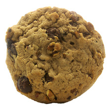 Pecan Caramel Dark Choc Chip 6 Large Cookies 4 inch by 1/2 thick