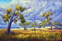 Original Australian Landscape Oil Painting After the storm by Chris Vidal