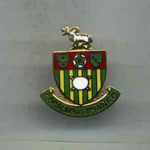 GODALMING TOWN  FC  NON LEAGUE FOOTBALL PIN BADGE