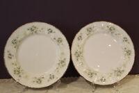 "SET OF 2 PARAGON 'FIRST LOVE' 10-1/2"" DINNER PLATES WITH PLATINUM TRIM"