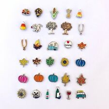 Floating Charms Thanksgiving Fall Autumn Charm fit Origami Owl Glass Lockets