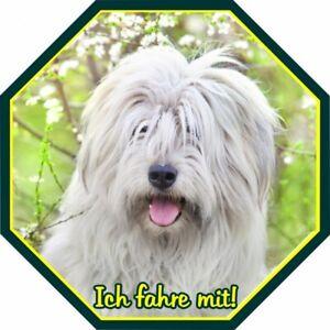 Aufkleber Südrussischer Owtscharka - Foliensticker Ovtscharka Schäferhund