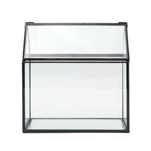 Irregular Geometric Glass Terrarium Air Plants Holder Tabletop Display Container